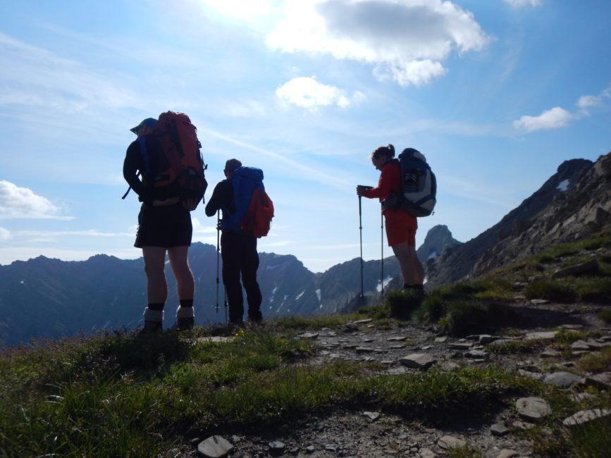 Lechtaler Höhenweg Juli 2019 - Am Galtseitenjoch