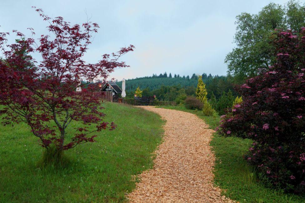 DAV Haus Astenberg - Gartenbereich mit LIegewiese