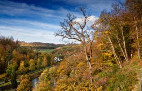 Artikelbild zu Artikel Herbstliches Wandertraining am Kahlen Asten
