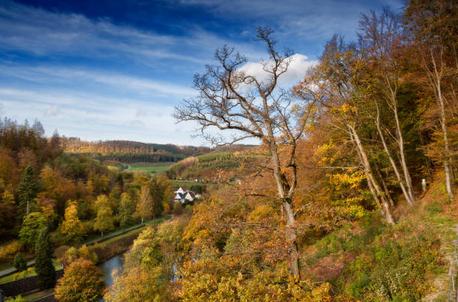 Herbstlandschaft genießen