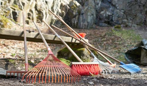 Artikelbild zu Artikel Frühjahrsputz im Klettergarten Spreeler Mühle