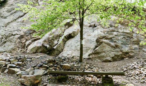 Artikelbild zu Artikel Klettergarten Spreeler Mühle – Neue Kletterrouten