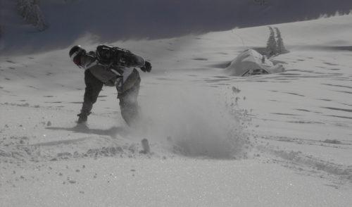 Artikelbild zu Artikel Angebote der Skigruppen – Winter 2021/2022